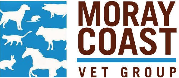 Companion Animals – Moray Coast Vet Group