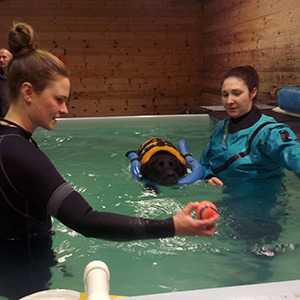 hydrotherapy 300px